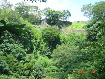 岡城 西の丸石垣