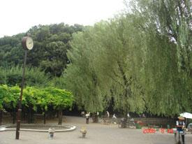 赤塚城 城址と水堀跡