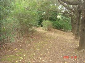 赤塚城 土塁跡