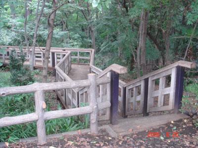 赤塚城 木橋