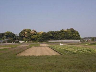 神代城全景