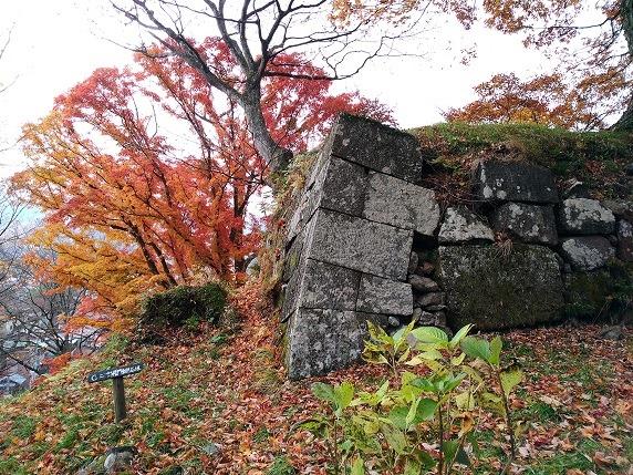 二ノ郭櫓門石垣脇の紅葉