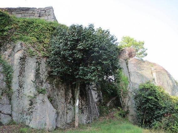 65本丸下巨岩