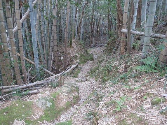 47西登り口への道