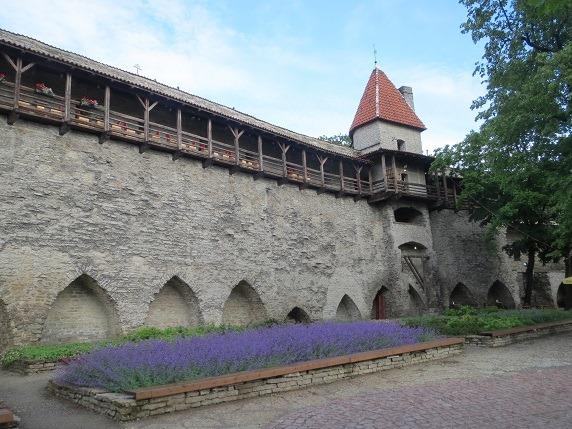 43デンマーク王の庭
