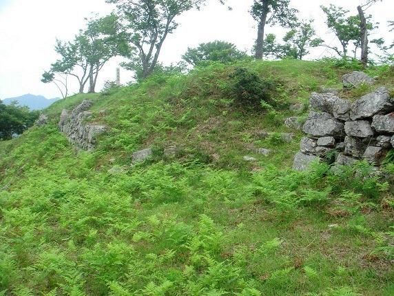 35本丸西面の石垣と虎口