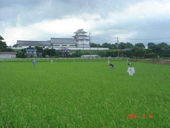 関宿城遠景