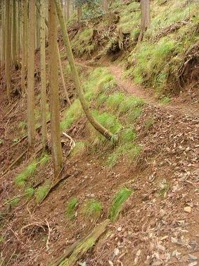 急斜面の道