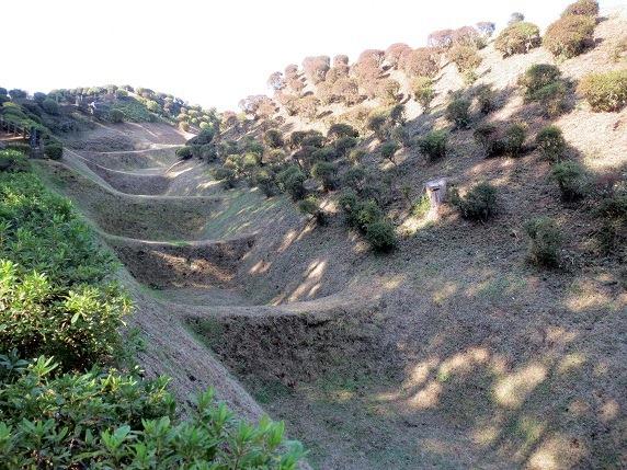 西の丸畝堀