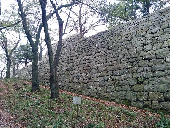 本丸東面石垣