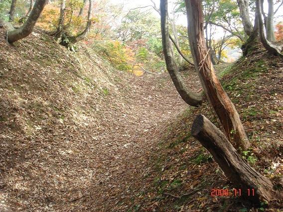 5大手郭と虎口郭間の空堀