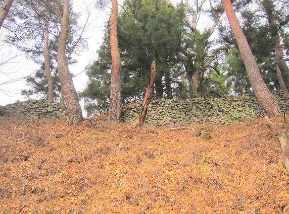26東斜面の石垣