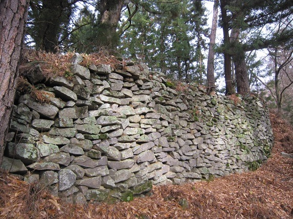 27東斜面石垣