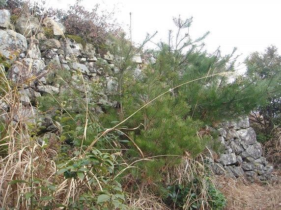 西の丸石垣2
