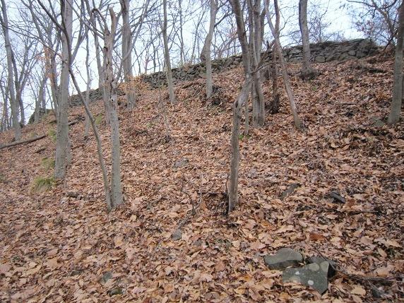 主郭西側の石垣全体像