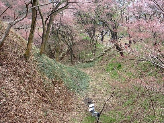 南曲輪と本丸間の空堀