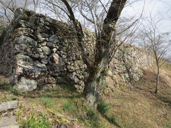 15南面石垣