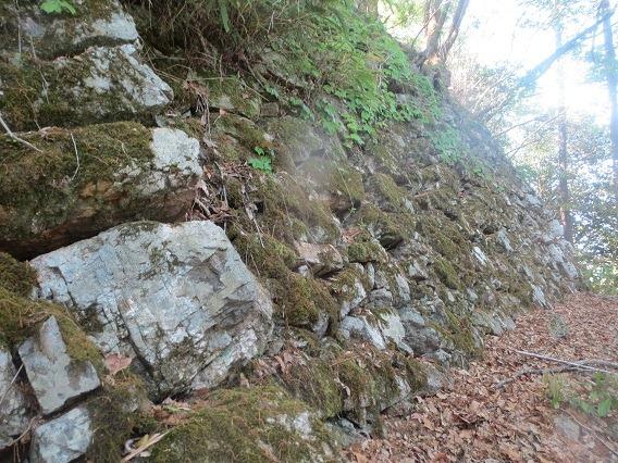 49東面石垣