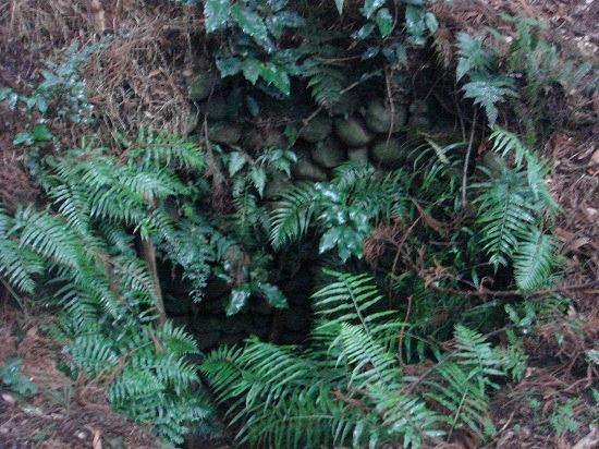 カンカン井戸2