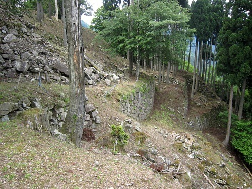 10本丸西側の石垣群