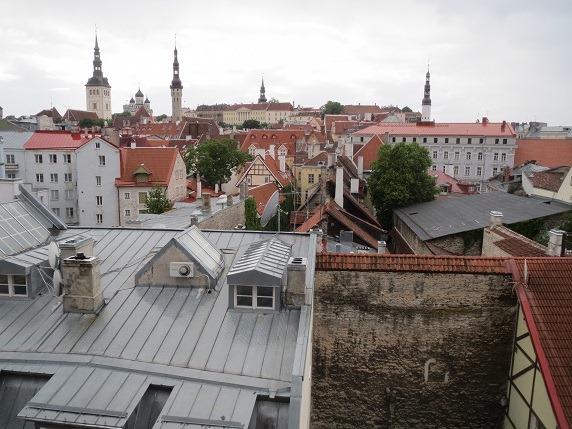 ヘレマン塔からの眺望