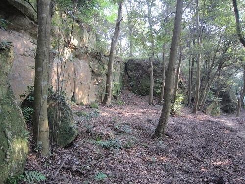 37二の丸岩壁