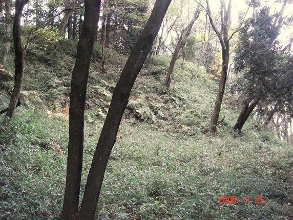 二の丸西側石垣1