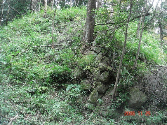 二の丸西側石垣2