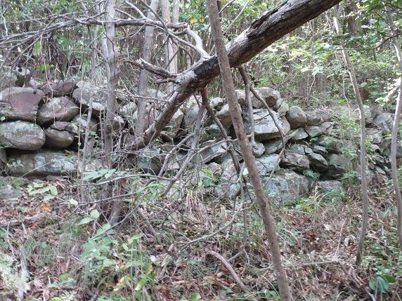 21本丸石垣