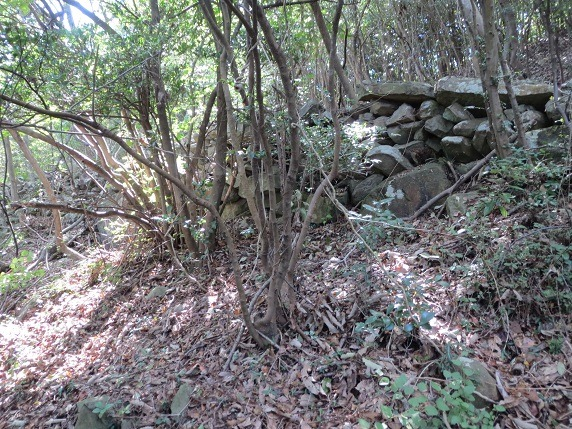 23本丸石垣