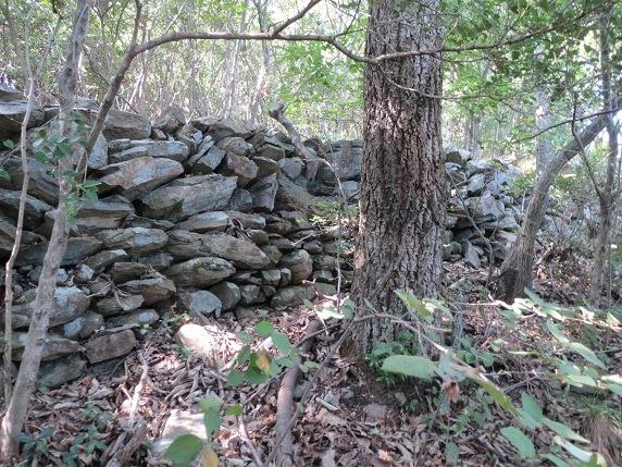31二の丸石垣