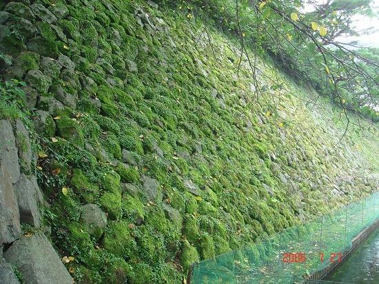 09本丸石垣