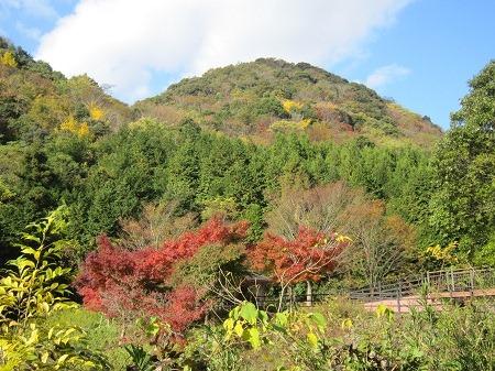 09木戸公園から高嶺城を望む
