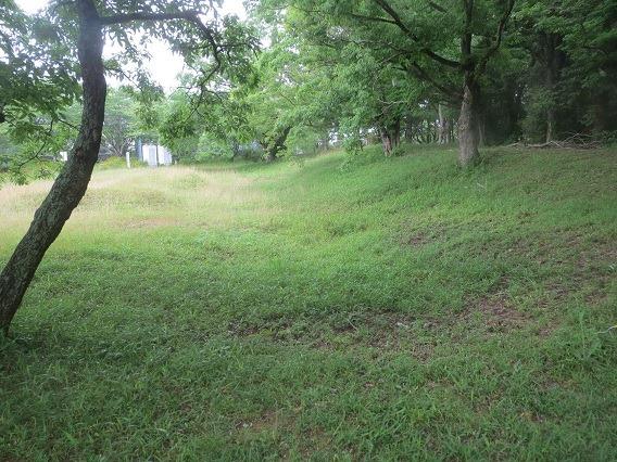 南側土塁と外堀