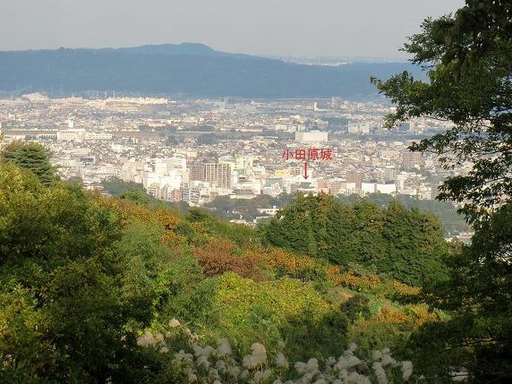 小田原城遠景2