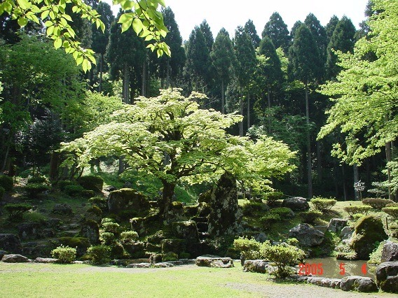 09諏訪館跡庭園1