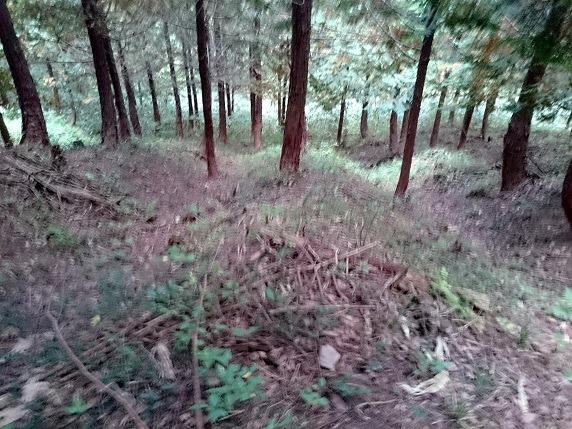 37畝状竪堀