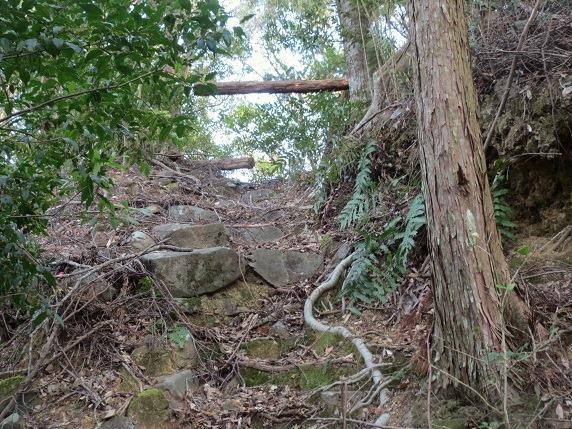 47詰の段北虎口石段