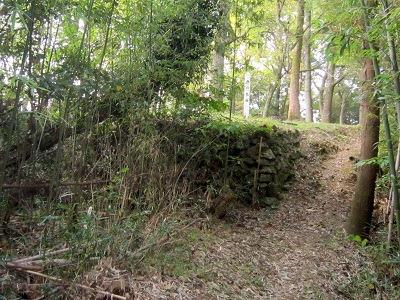 10西の丸石垣