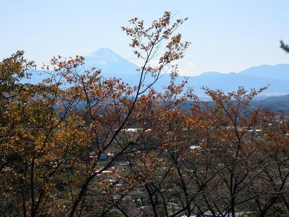 29富士山
