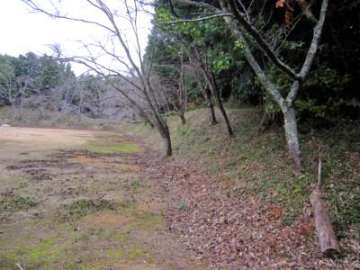 南側から東側にかけての土塁