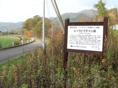 ルイオピラチャシ(新ひだか町、旧静内町)