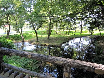 武蔵 花崎城(加須市)