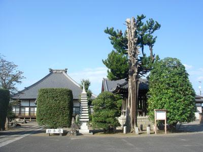 武蔵 曲田城(深谷市)