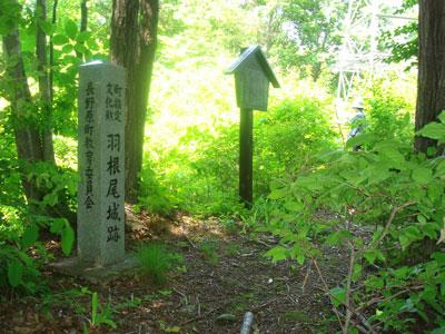 上野 羽根尾城(長野原町)
