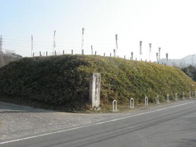 上野 平井城(藤岡市)