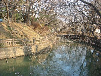 上野 小泉城(大泉町)