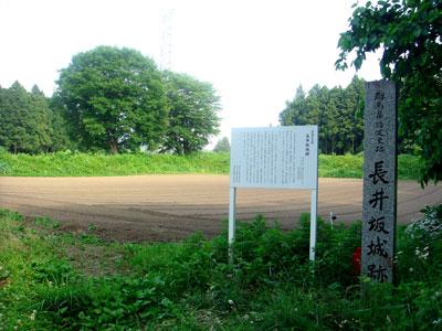 上野 長井坂城(渋川市)