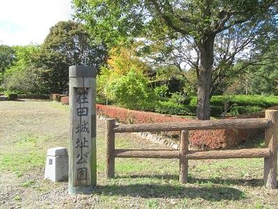上野 荘田城(沼田市)
