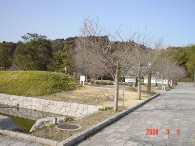 常陸 松岡城(高萩市)